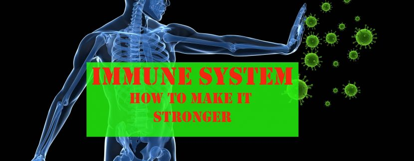 immune system foods to make it scronger