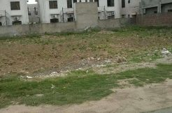 pia-housing-1-kanal-plot